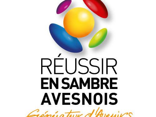 Appel à concurrence RESA FSE PLIE 2020
